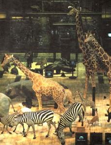 Вымершие и вымерающие животные